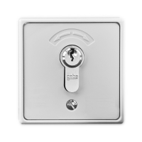 Schlüsseltaster mit Zylinder inkl. 3 Schlüssel 4596 | Aufputz