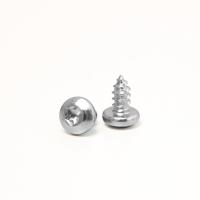 Schraube für Rolladen Stahlwellen (ab SW60) | 4,8 x 9,5mm | TX25