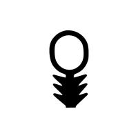 Sonder-Dichtung SD011 | schwarz | 5 lfm
